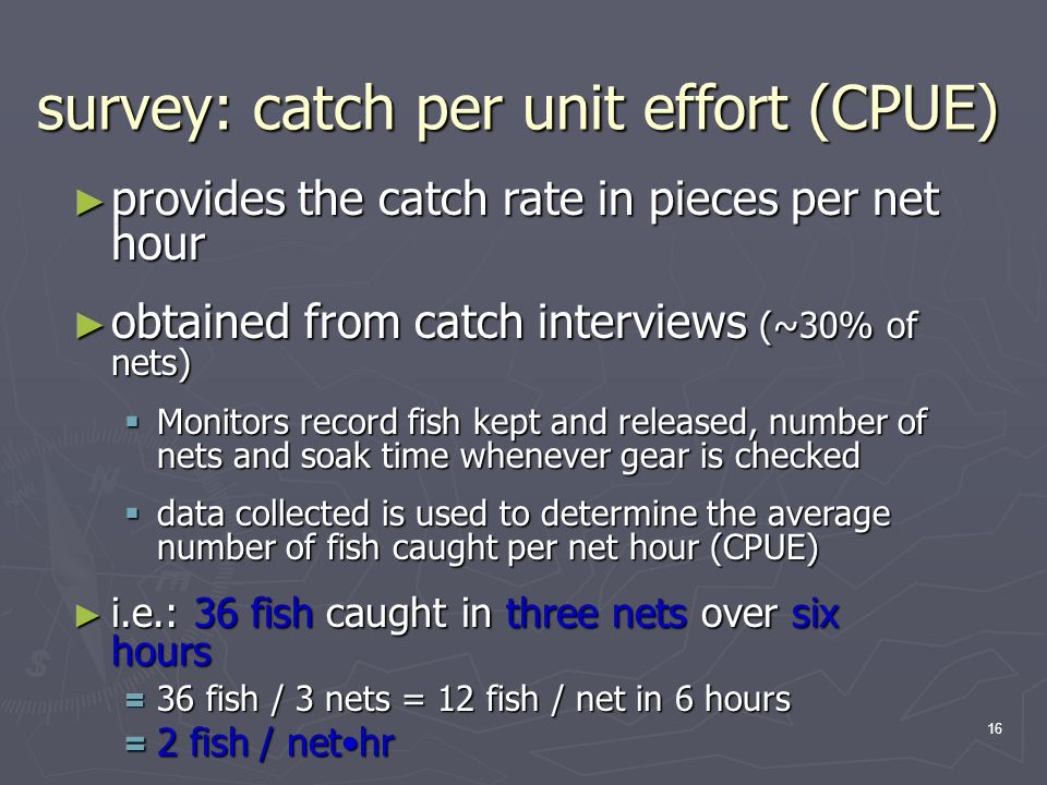 16 ► provides the catch rate in pieces per net hour ► obtained from catch interviews (~30% of nets)  Monitors record fish kept and released, number of nets and soak time whenever gear is checked  data collected is used to determine the average number of fish caught per net hour (CPUE) ► i.e.: 36 fish caught in three nets over six hours = 36 fish / 3 nets = 12 fish / net in 6 hours = 2 fish / nethr survey: catch per unit effort (CPUE)