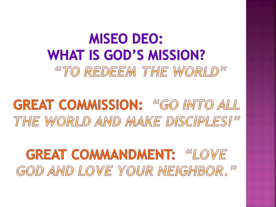  The Missional Congregation understands that it is primarily a missional community of people being trained and equipped to live among the world as daily disciples.