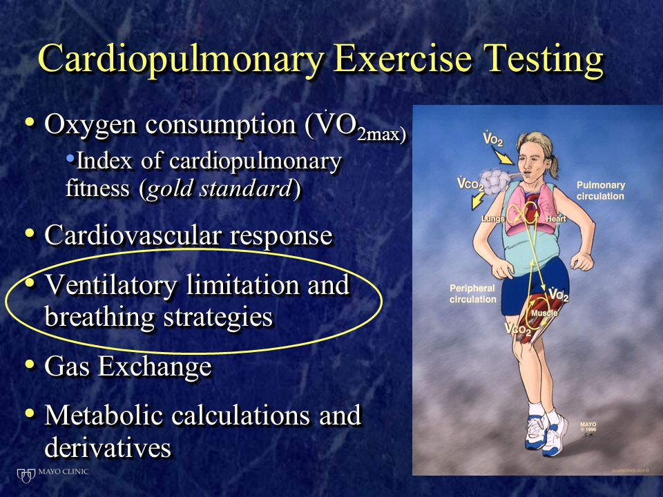 Cardiopulmonary Exercise Testing O   O 2max) O   O 2max) Index of cardiopulmonary fitness (gold standard) Index of cardiopulmonary fitness (gold standard) Cardiovascular response Cardiovascular response Ventilatory limitation and breathing strategies Ventilatory limitation and breathing strategies Gas Exchange Gas Exchange Metabolic calculations and derivatives Metabolic calculations and derivatives O   O 2max) O   O 2max) Index of cardiopulmonary fitness (gold standard) Index of cardiopulmonary fitness (gold standard) Cardiovascular response Cardiovascular response Ventilatory limitation and breathing strategies Ventilatory limitation and breathing strategies Gas Exchange Gas Exchange Metabolic calculations and derivatives Metabolic calculations and derivatives