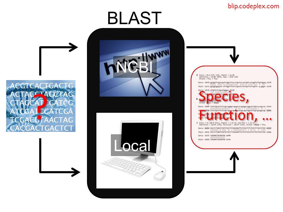 BLAST ACGTCACTGACTG ACTAGCTAGCTAG CTAGCATCGATCG ATCGATCGATCGA TCGACGTAACTAG CACGACTGACTCT .