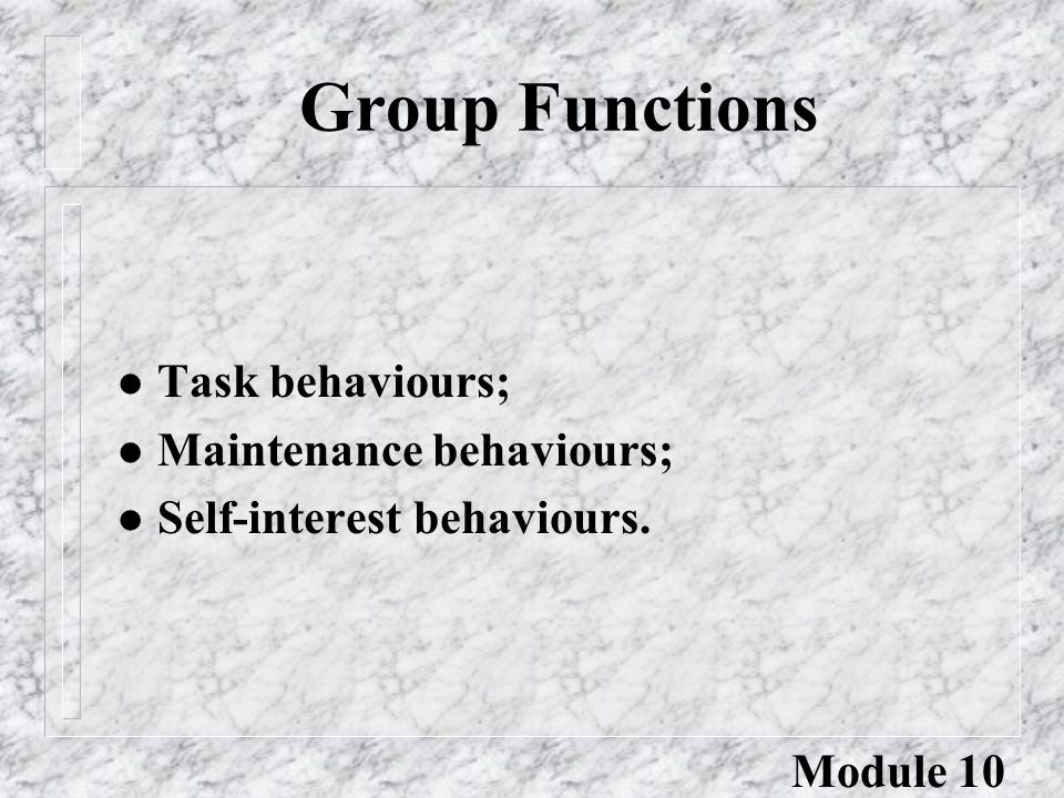 Group Functions l Task behaviours; l Maintenance behaviours; l Self-interest behaviours. Module 10
