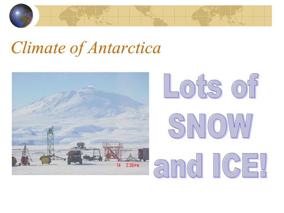 Environment of Antarctica Animals native to Antarctica are Penguins, Sea Lions and Orcas.