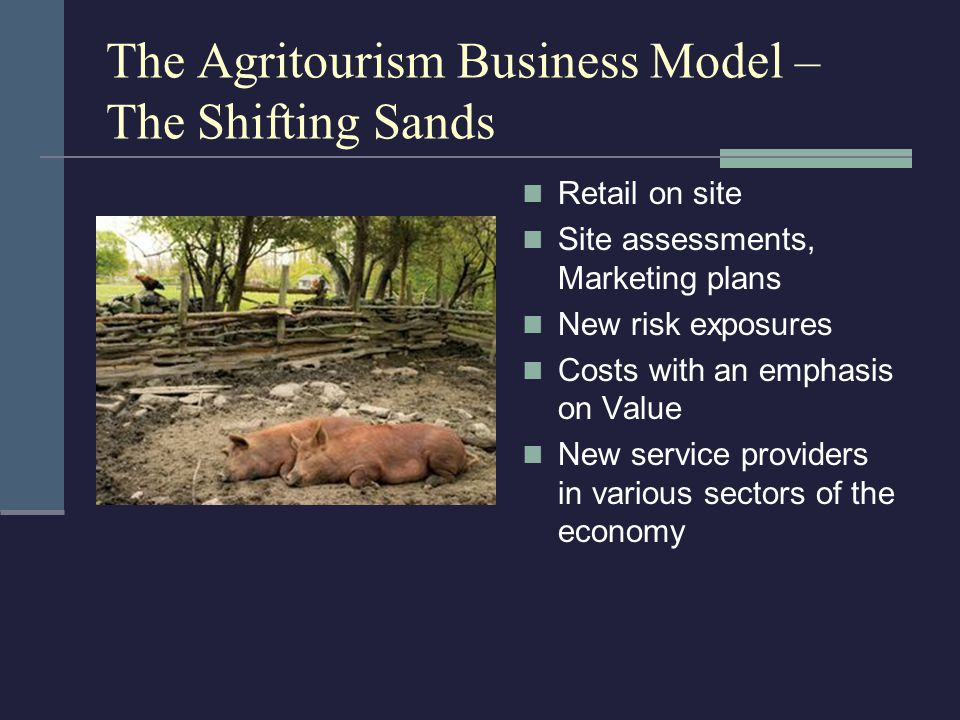 The Agritourism Business Model – The Shifting Sands Retail on site Site assessments, Marketing plans New risk exposures Costs with an emphasis on Value New service providers in various sectors of the economy