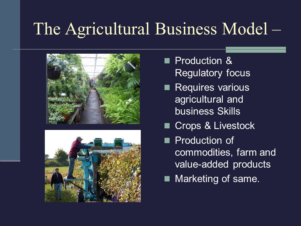 The Agricultural Business Model – Production & Regulatory focus Requires various agricultural and business Skills Crops & Livestock Production of commodities, farm and value-added products Marketing of same.