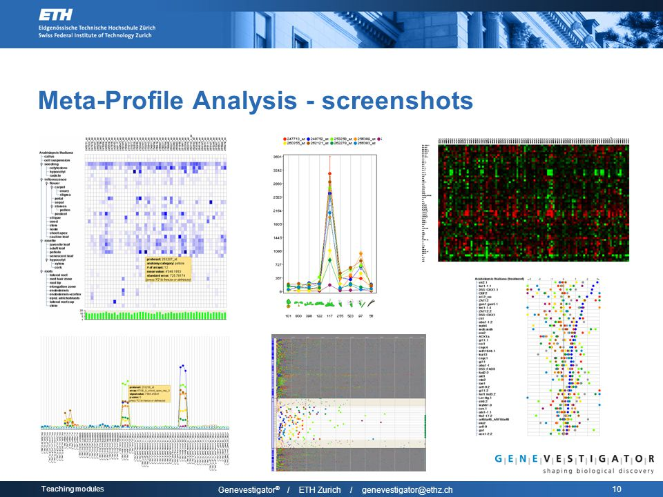 Teaching modules Genevestigator ® / ETH Zurich / genevestigator@ethz.ch 10 Meta-Profile Analysis - screenshots