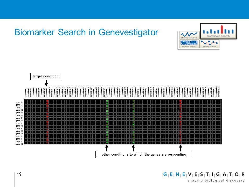 19 Biomarker Search in Genevestigator condition 1condition 2condition 3condition 4condition 5condition 6condition 7condition 8condition 9 condition 10