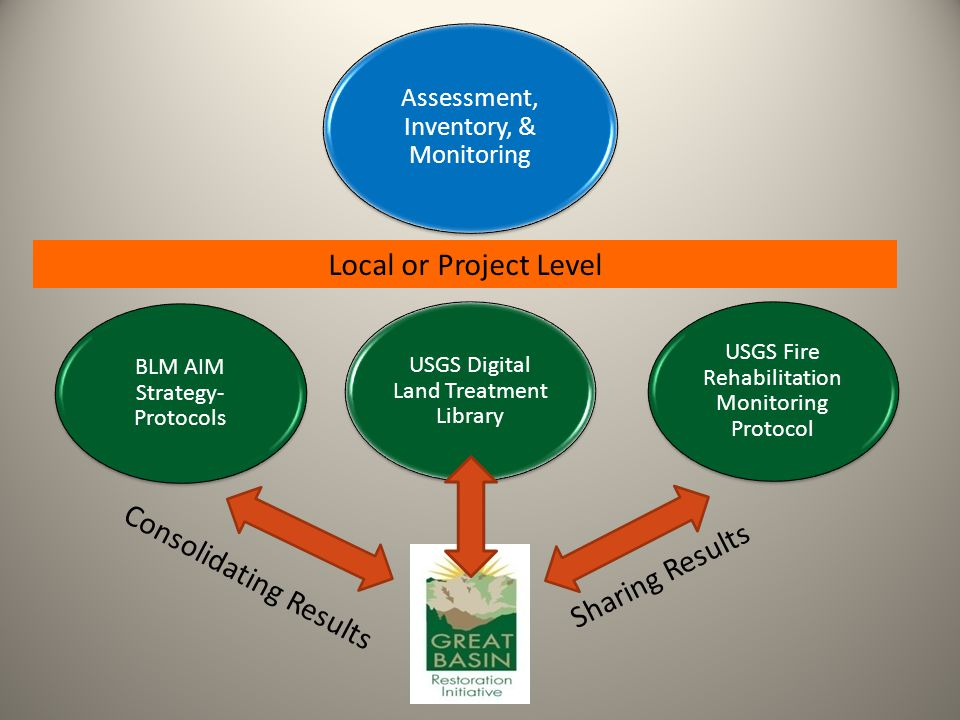 Local or Project Level Assessment, Inventory, & Monitoring BLM AIM Strategy- Protocols USGS Fire Rehabilitation Monitoring Protocol USGS Digital Land Treatment Library Consolidating Results Sharing Results