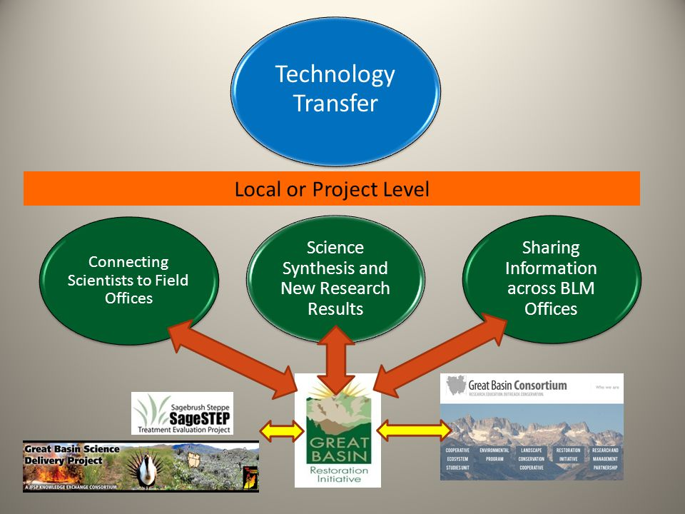 Local or Project Level Technology Transfer Connecting Scientists to Field Offices Sharing Information across BLM Offices Science Synthesis and New Research Results
