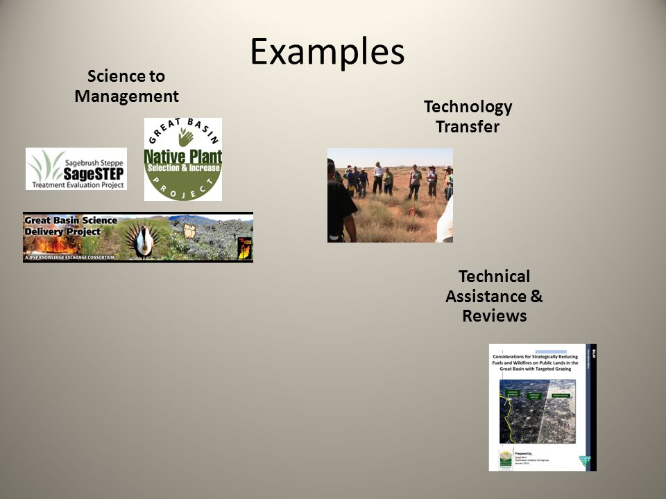 Examples Science to Management Technology Transfer Technical Assistance & Reviews