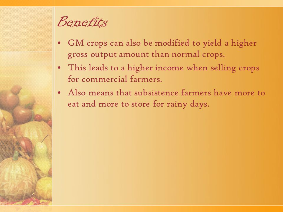 Benefits GM foods can be modified to have a longer shelf life such that it can be stored for longer periods of time without going bad.
