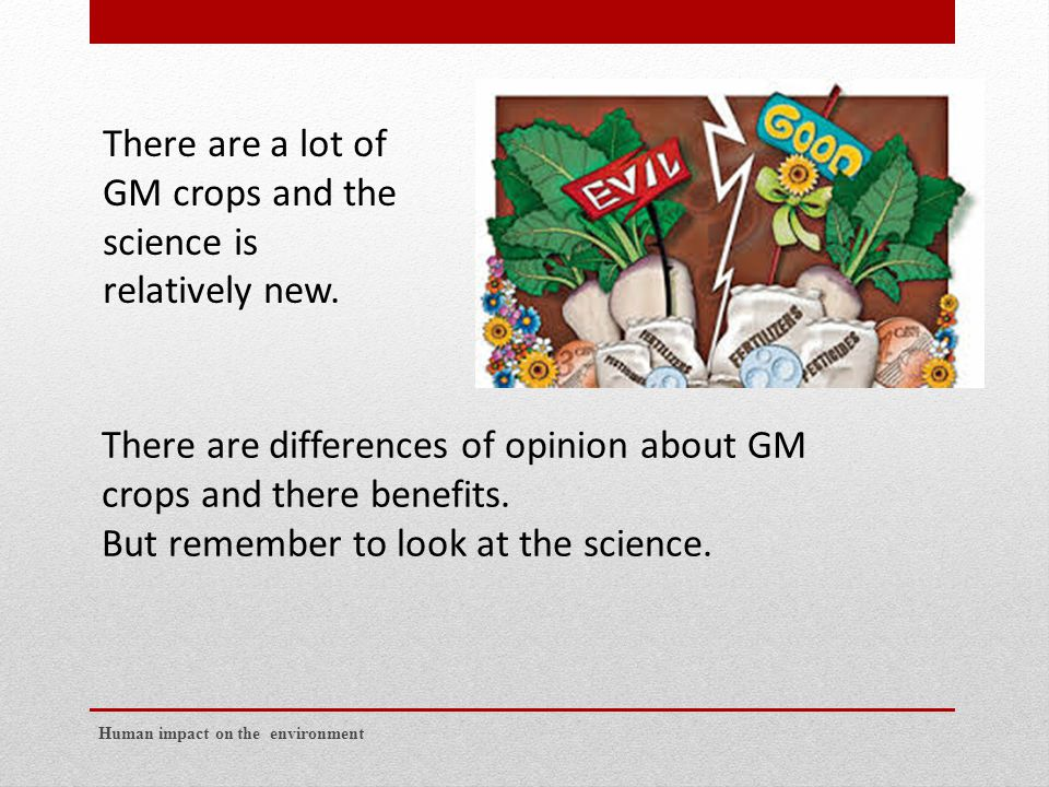 Human impact on the environment There are differences of opinion about GM crops and there benefits.