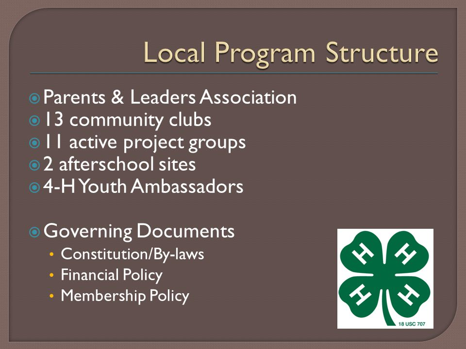  13 community clubs  11 active project groups  2 afterschool sites  4-H Youth Ambassadors  Governing Documents Constitution/By-laws Financial Policy Membership Policy