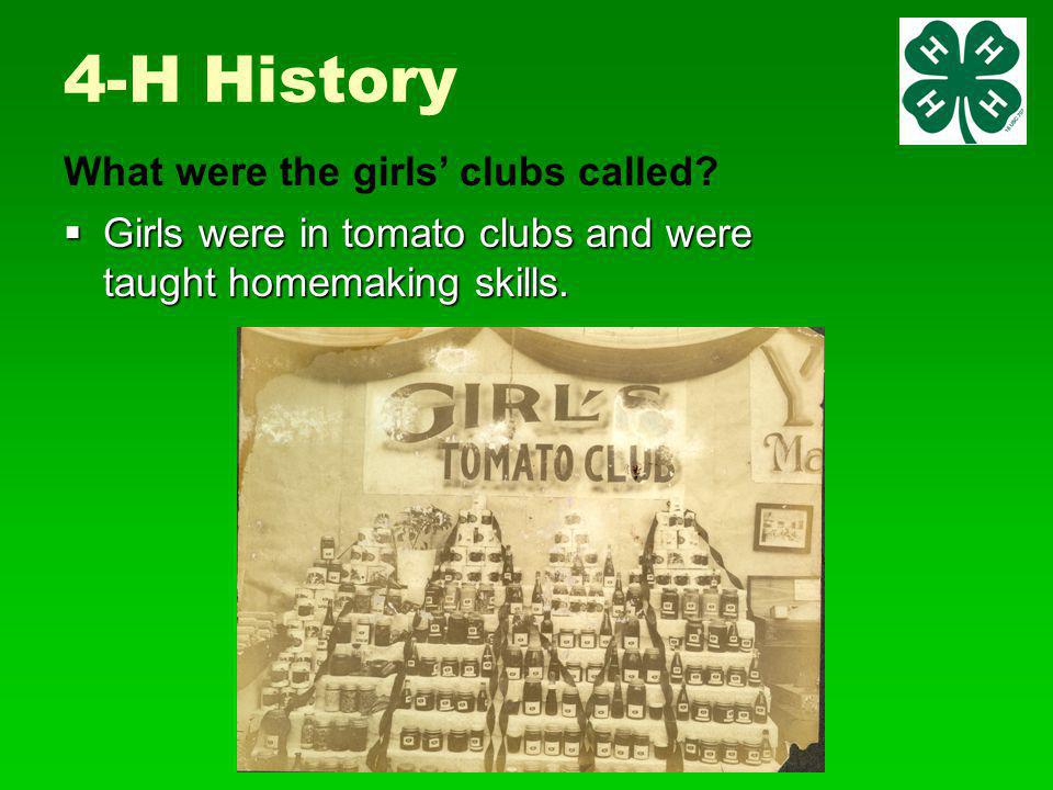 4-H History  Girls were in tomato clubs and were taught homemaking skills.