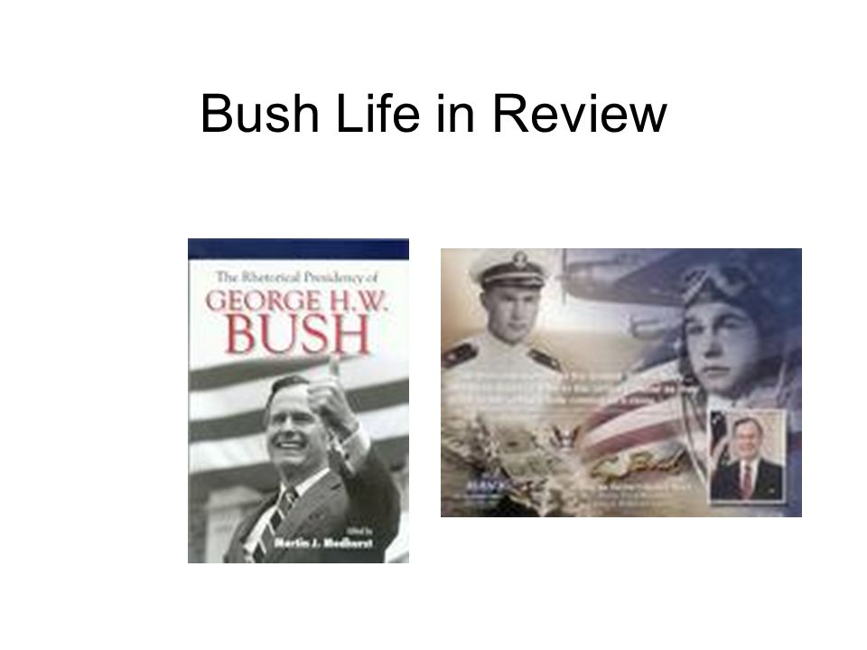 Bush Life in Review