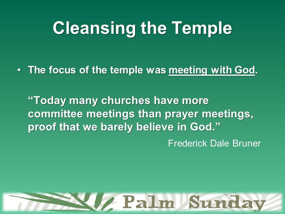 Cleansing the Temple The focus of the temple was meeting with God.The focus of the temple was meeting with God.