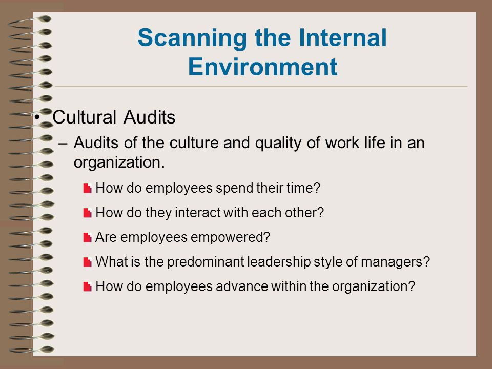Scanning the Internal Environment Cultural Audits –Audits of the culture and quality of work life in an organization.