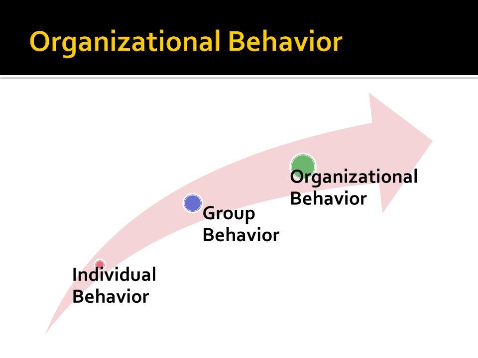 Individual Behavior Group Behavior Organizational Behavior