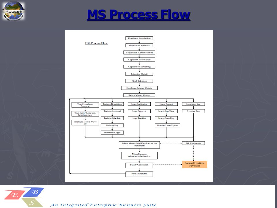 MS Process Flow