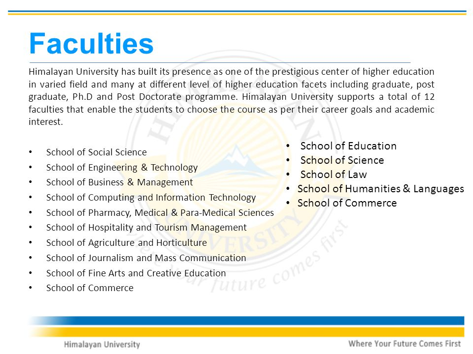 Faculties Himalayan University has built its presence as one of the prestigious center of higher education in varied field and many at different level of higher education facets including graduate, post graduate, Ph.D and Post Doctorate programme.
