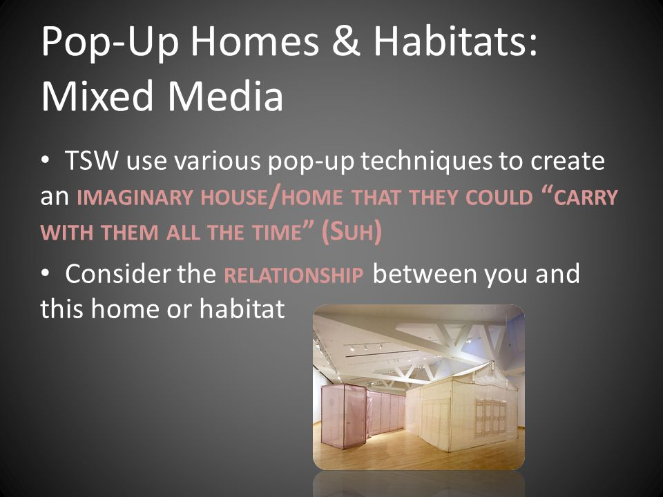 Pop-Up Homes & Habitats: Mixed Media TSW use various pop-up techniques to create an IMAGINARY HOUSE / HOME THAT THEY COULD CARRY WITH THEM ALL THE TIME (S UH ) Consider the RELATIONSHIP between you and this home or habitat