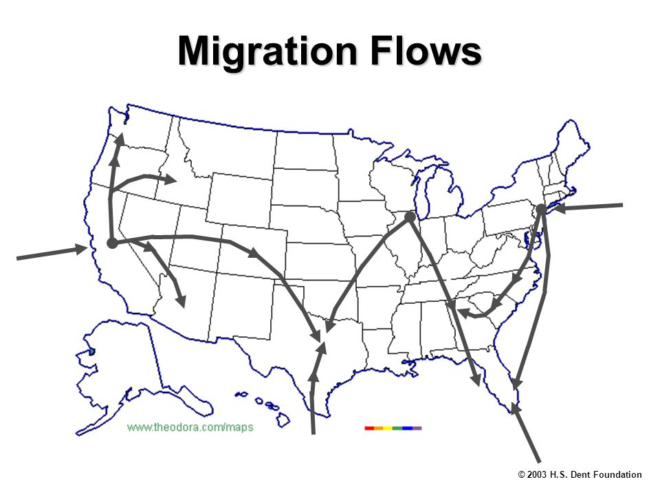 © 2003 H.S. Dent Foundation Migration Flows