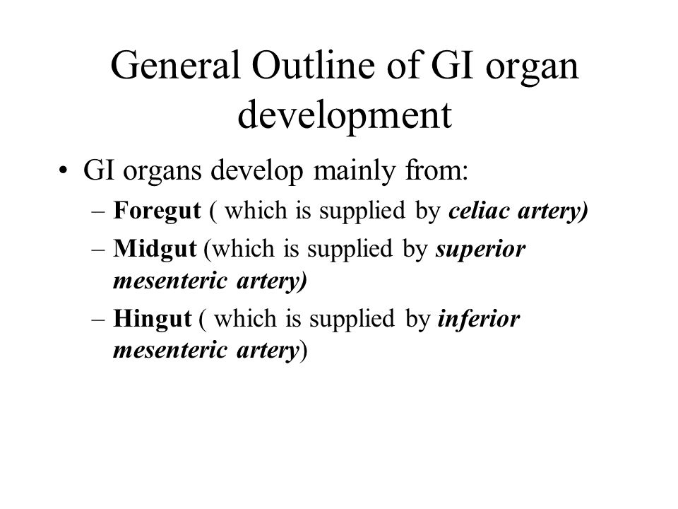 General Outline of GI organ development GI organs develop mainly from: –Foregut ( which is supplied by celiac artery) –Midgut (which is supplied by superior mesenteric artery) –Hingut ( which is supplied by inferior mesenteric artery)