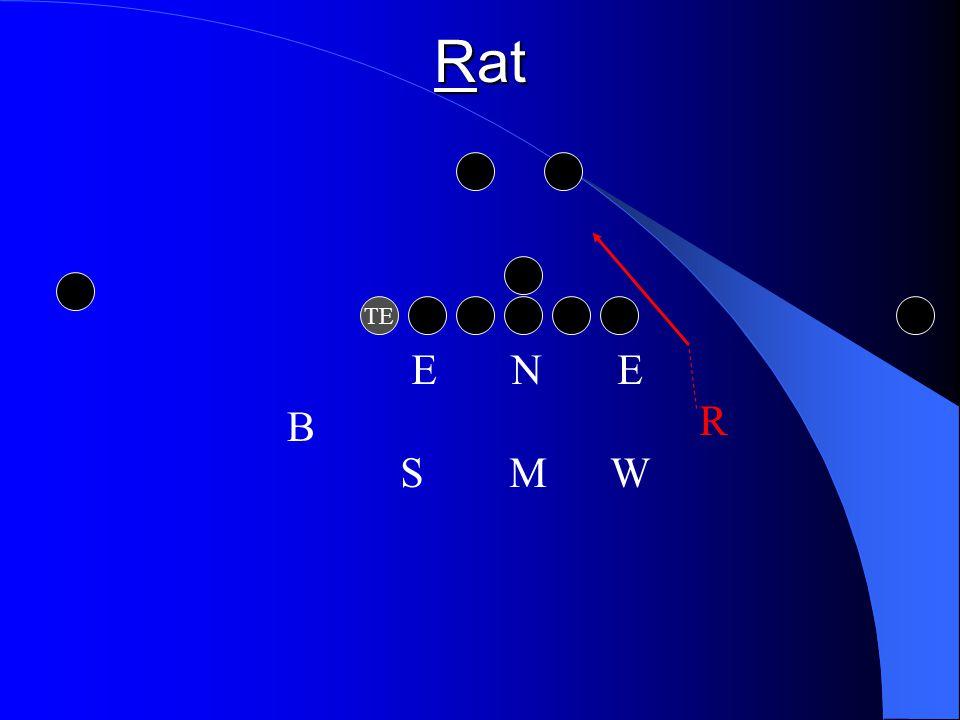 Rat TE E N E R S M W B