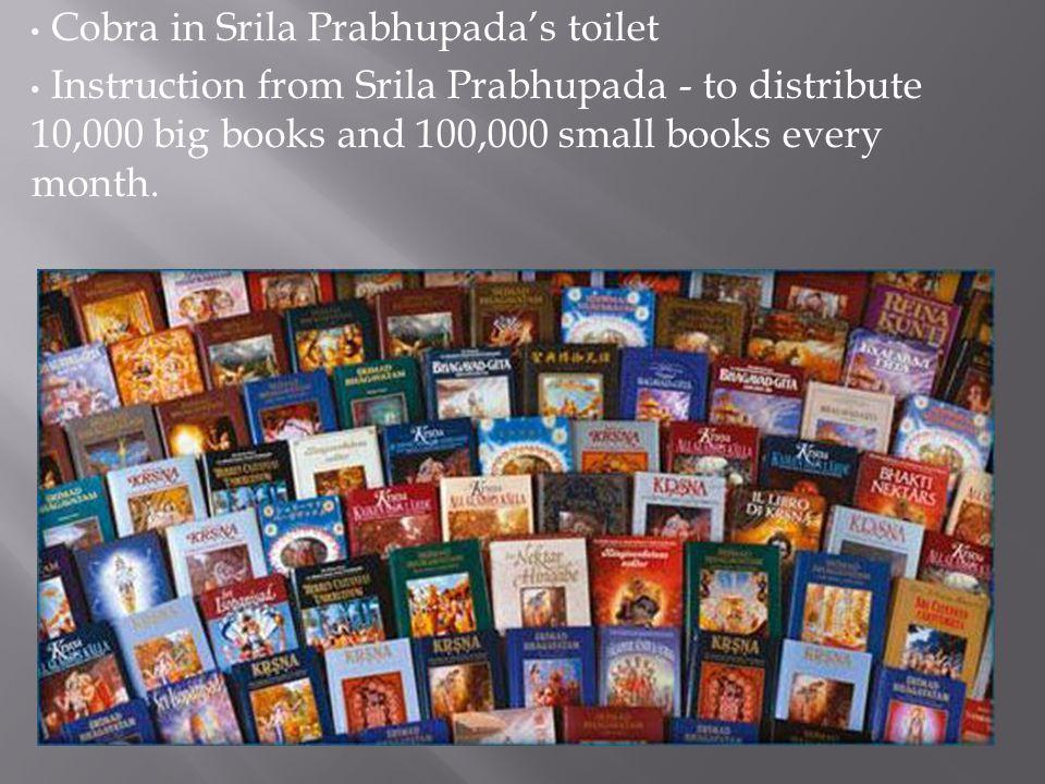 Cobra in Srila Prabhupada's toilet Instruction from Srila Prabhupada - to distribute 10,000 big books and 100,000 small books every month.