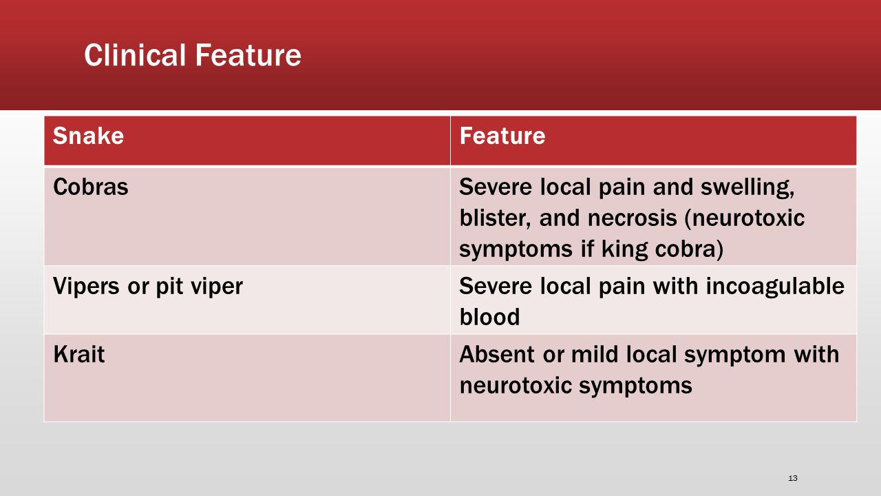 Clinical Feature SnakeFeature CobrasSevere local pain and swelling, blister, and necrosis (neurotoxic symptoms if king cobra) Vipers or pit viperSevere local pain with incoagulable blood KraitAbsent or mild local symptom with neurotoxic symptoms 13