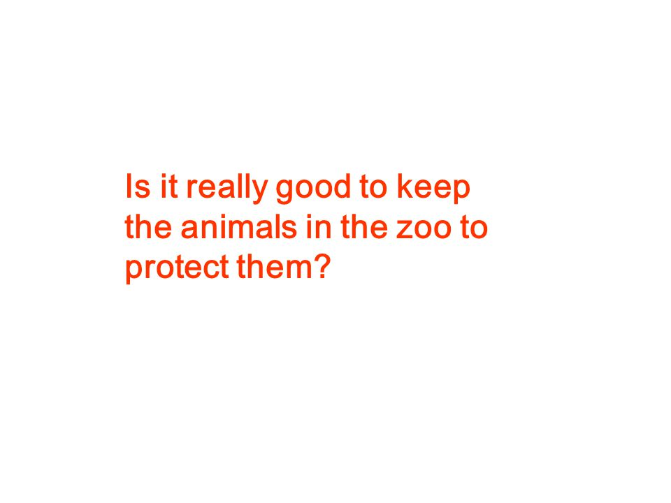 Is it really good to keep the animals in the zoo to protect them?