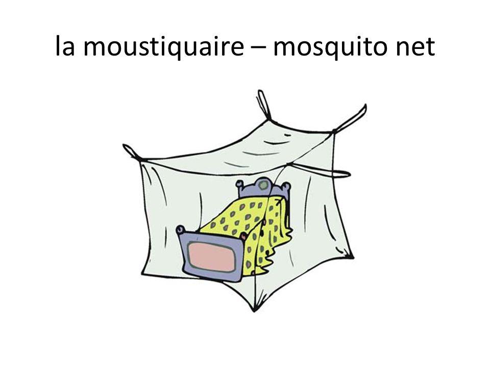 la moustiquaire – mosquito net