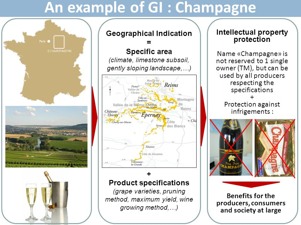 An example of GI : Champagne Geographical Indication = Specific area (climate, limestone subsoil, gently sloping landscape,…) + Product specifications
