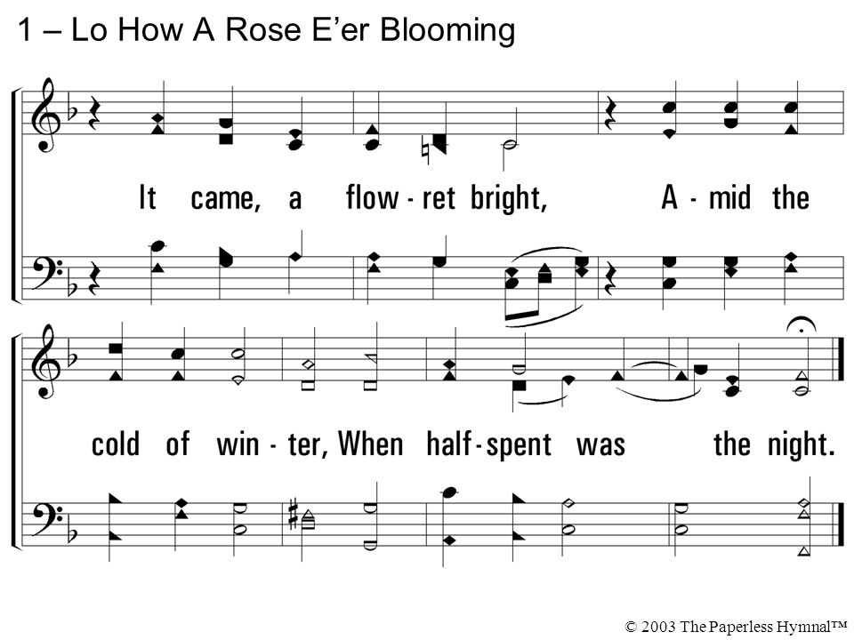 1 – Lo How A Rose E'er Blooming © 2003 The Paperless Hymnal™