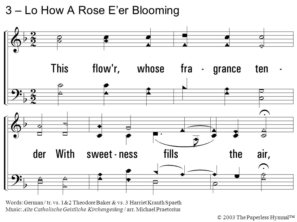 3 – Lo How A Rose E'er Blooming © 2003 The Paperless Hymnal™