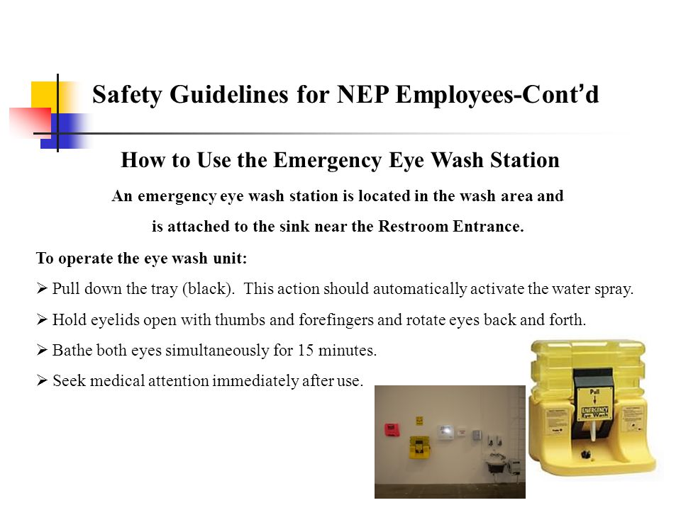 Section 3 Eye Wash Station Personal Protective Equipment (PPE) Hearing Conservation Tool Safety Fall Protection Ladders Fall Protection/Ladders