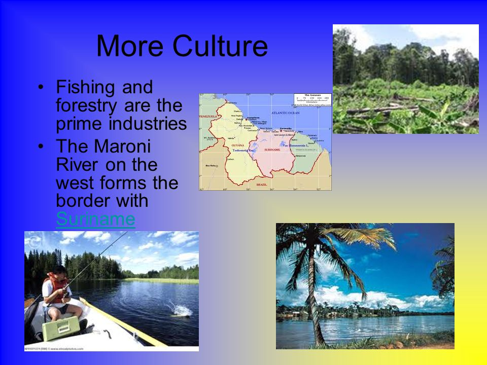 More Culture Fishing and forestry are the prime industries The Maroni River on the west forms the border with Suriname Suriname