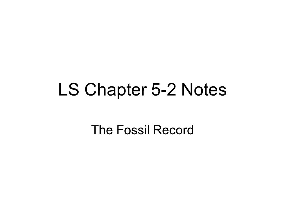 What is a Fossil.