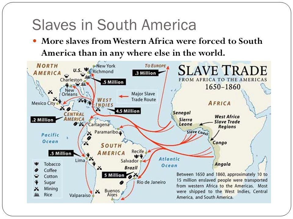 Slaves in South America More slaves from Western Africa were forced to South America than in any where else in the world.