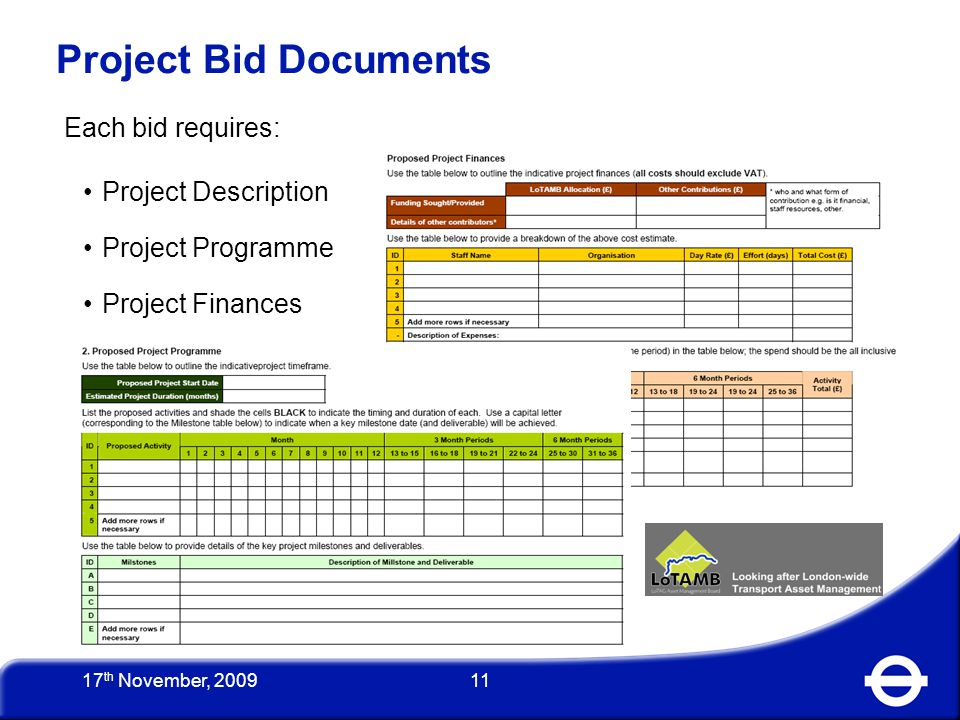 11 Project Bid Documents Each bid requires: Project Description Project Programme Project Finances 17 th November, 2009