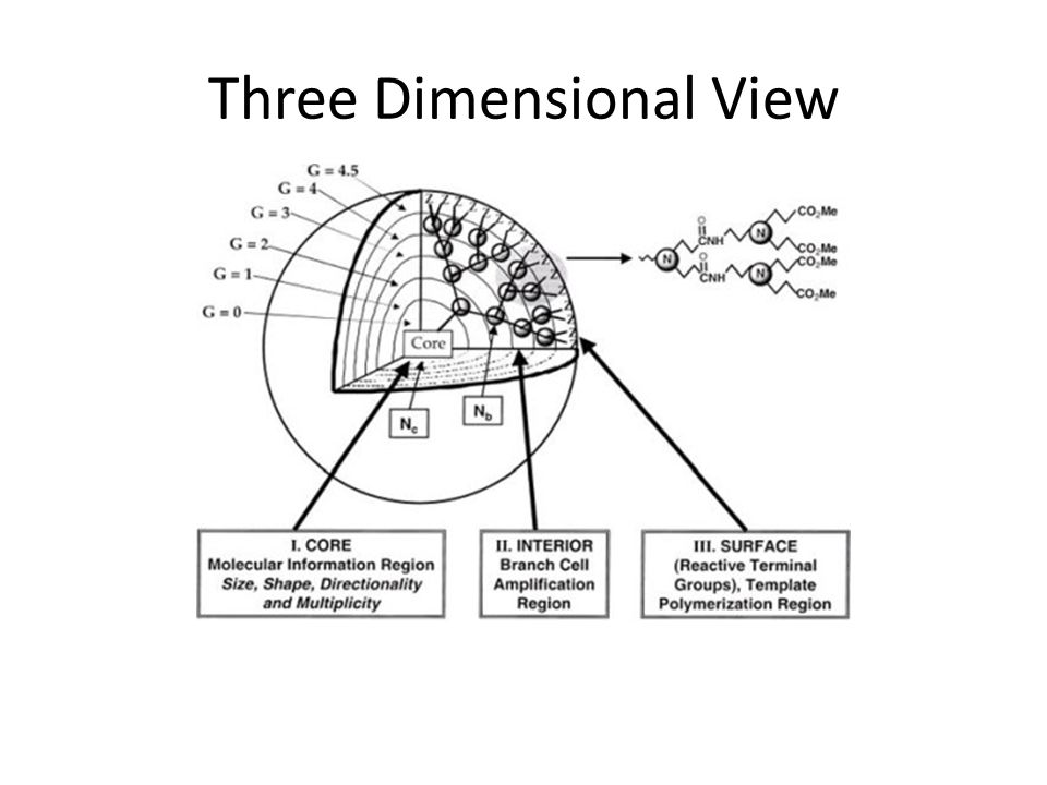 Three Dimensional View