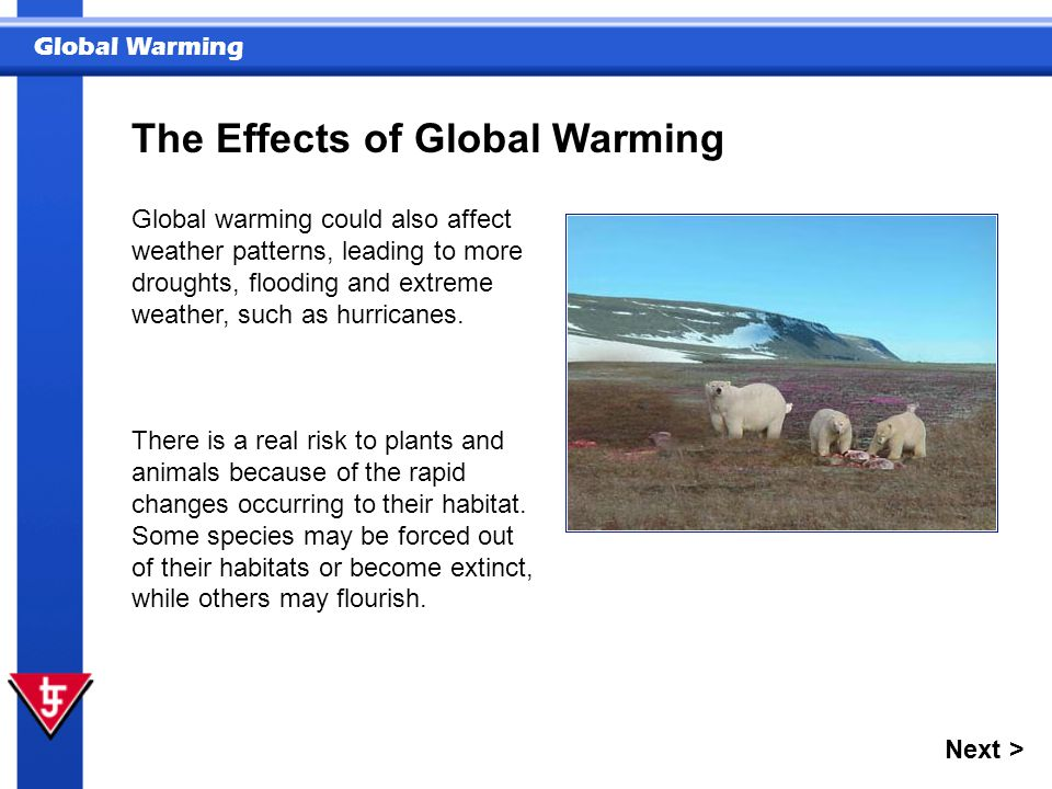Global Warming Global warming could also affect weather patterns, leading to more droughts, flooding and extreme weather, such as hurricanes.