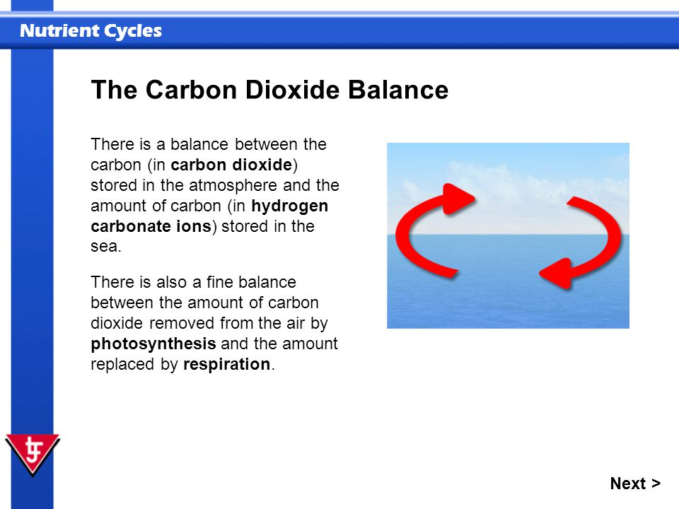 Nutrient Cycles There is a balance between the carbon (in carbon dioxide) stored in the atmosphere and the amount of carbon (in hydrogen carbonate ion
