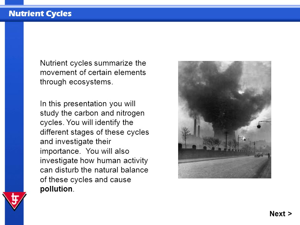 Nutrient Cycles Nutrient cycles summarize the movement of certain elements through ecosystems. In this presentation you will study the carbon and nitr