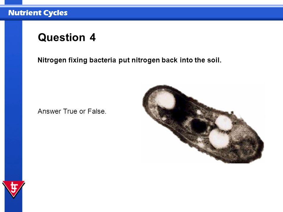 Nutrient Cycles 4 Nitrogen fixing bacteria put nitrogen back into the soil. Answer True or False. Question