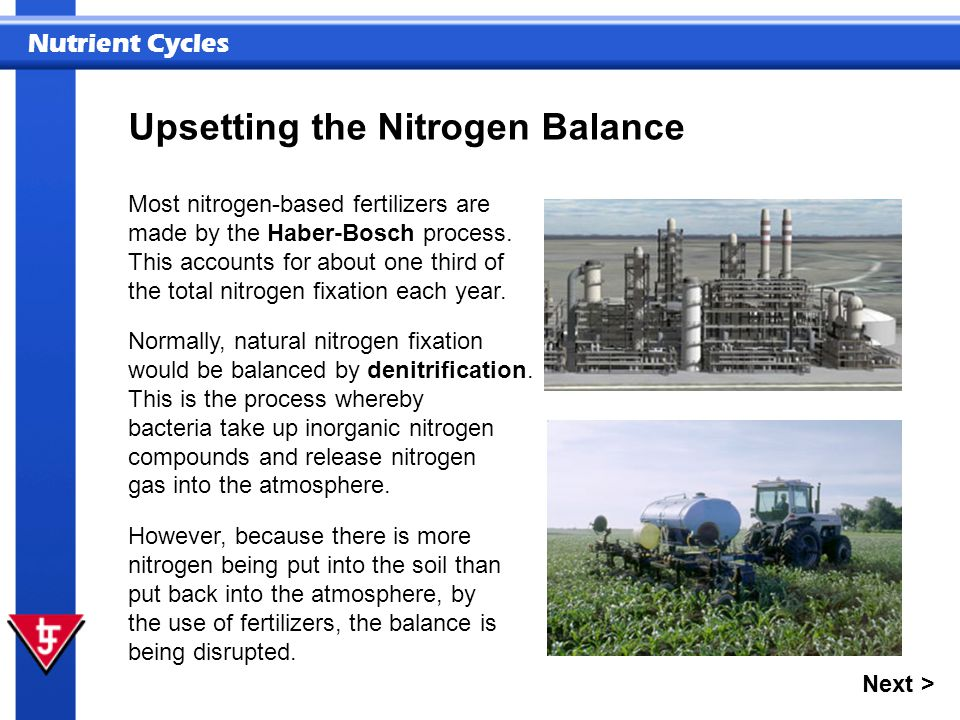 Nutrient Cycles Most nitrogen-based fertilizers are made by the Haber-Bosch process. This accounts for about one third of the total nitrogen fixation