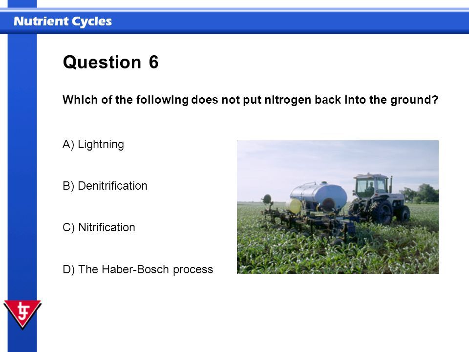 Nutrient Cycles 6 Which of the following does not put nitrogen back into the ground? Question A) Lightning B) Denitrification C) Nitrification D) The