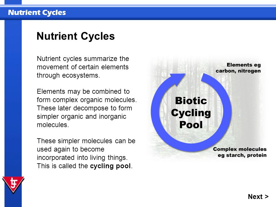 Nutrient Cycles Nutrient cycles summarize the movement of certain elements through ecosystems. Elements may be combined to form complex organic molecu