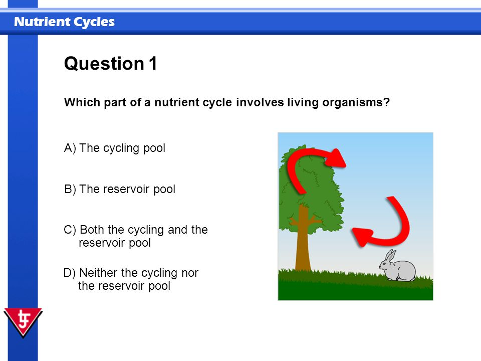 Nutrient Cycles 1 Which part of a nutrient cycle involves living organisms? Question A) The cycling pool B) The reservoir pool C) Both the cycling and