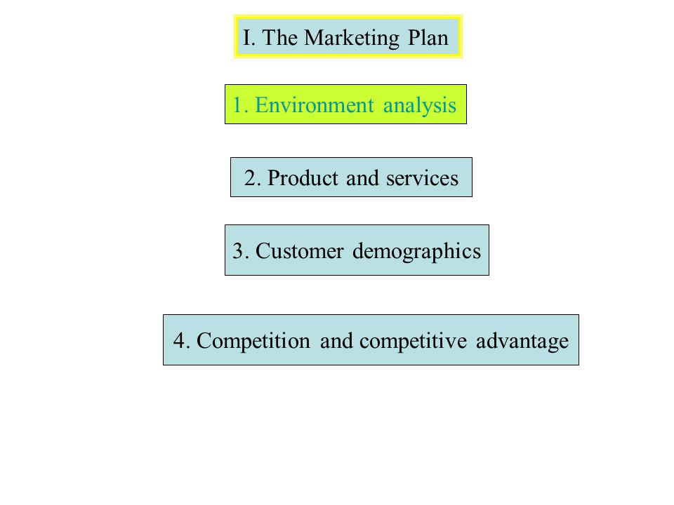I. The Marketing Plan 1. Environment analysis 2. Product and services 3. Customer demographics 4. Competition and competitive advantage