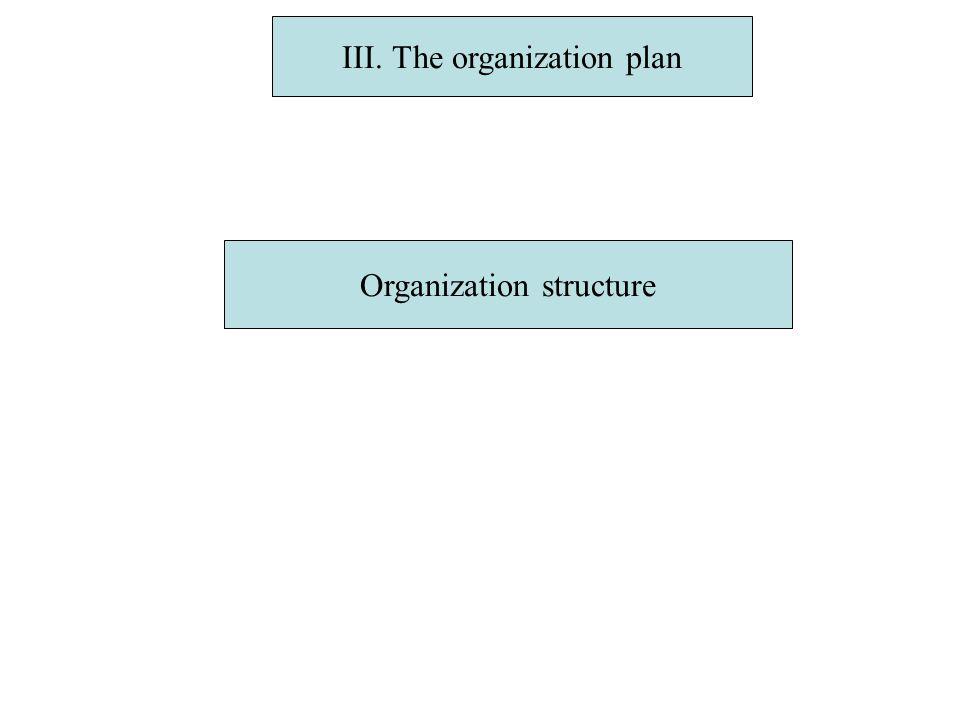 III. The organization plan Organization structure